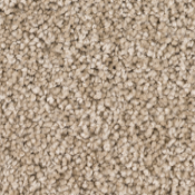 Carpet | Cashew