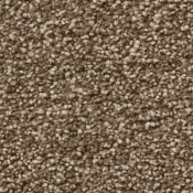 Carpet | Sensible Choice | Quail