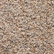 Carpet | Calico