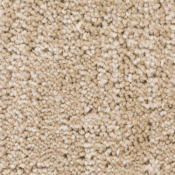 Carpet | Sandstone