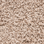Carpet | Latte