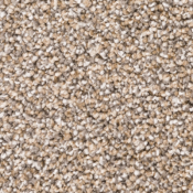 Carpet | Hazelnut