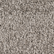 Carpet | Platinum