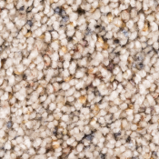 Carpet | Almond