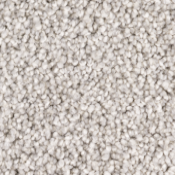 Carpet | Dove