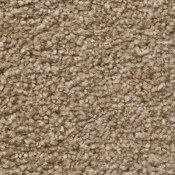Carpet | Sensible Choice | Sawgrass