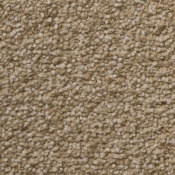 Carpet | Sensible Choice | Cashmere