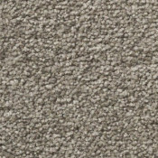 Carpet | Sensible Choice | Thunder