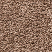 Carpet | Ace's Wild | Dried Peat