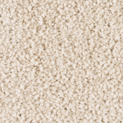 Carpet | Crystalline